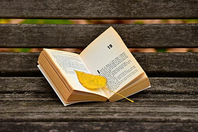 livre, lire, page